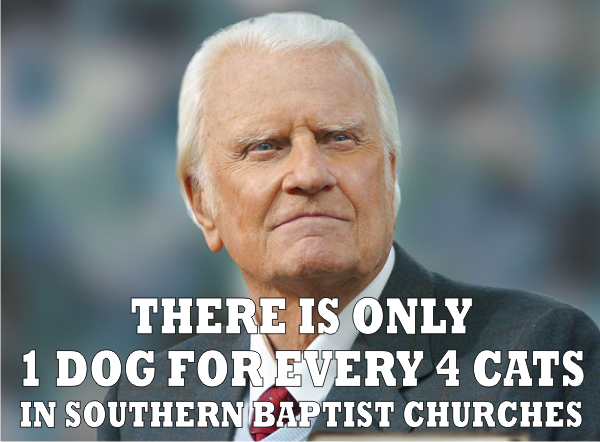 cat to dog billy graham